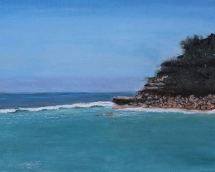 Caribbean by Barbara Joyce