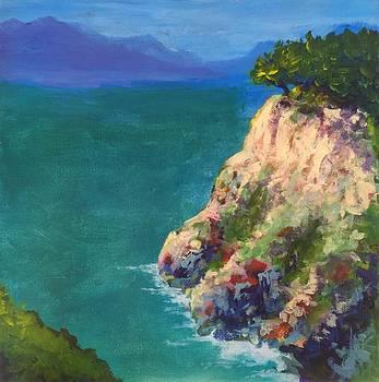 Caribbean Crag by J Travis Duncan