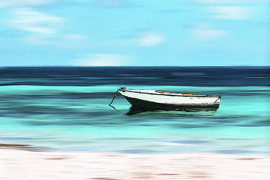 Caribbean Dream Boat by Deborah Smith