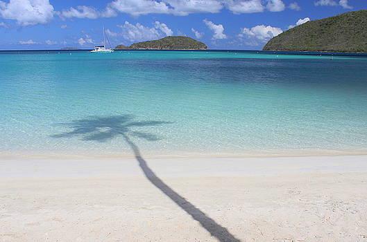 Caribbean Shadow by Fiona Kennard