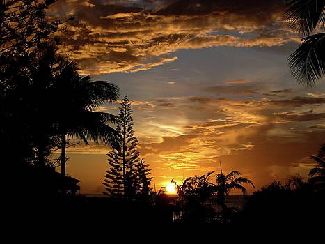 Caribbean Sunset by Galexa Ch