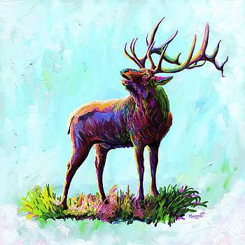 Colorful Caribou by Anthony Mwangi