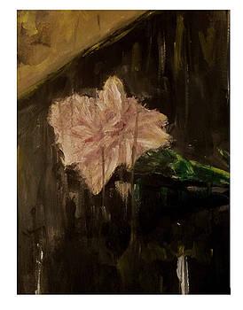 Carnation for Harvey by Esmeralda Acupan