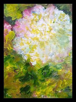 Patricia Taylor - Carnation Holiday Card