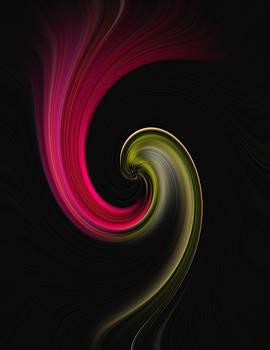 Carnation Twirl by John Forde
