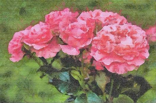 Carnations by John Winner
