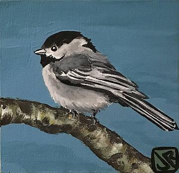 Carolina Chickadee by Julie K Ross