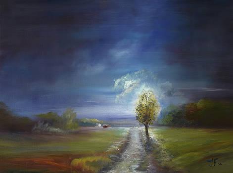 Carolina Moon by Tim Ford