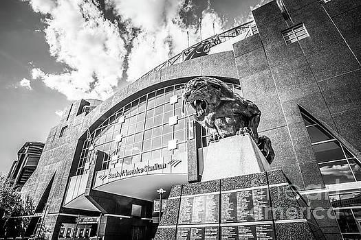 Paul Velgos - Carolina Panthers Stadium Black and White Photo