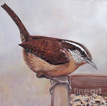 Carolina Wren by Charlotte Yealey