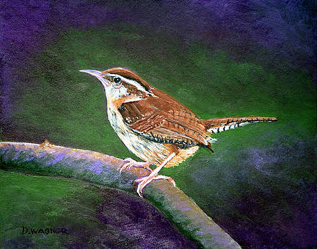 Carolina Wren by Denise Wagner