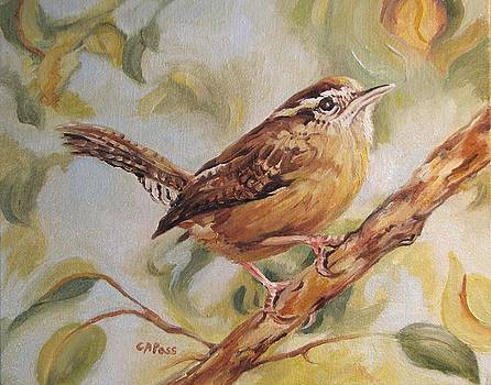 Carolina Wren II by Cheryl Pass