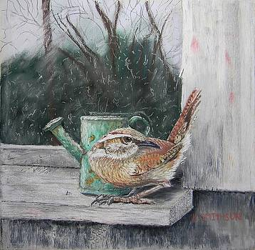 Carolina Wren by Kathryn Smithson