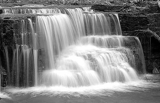 Larry Ricker - Caron Falls