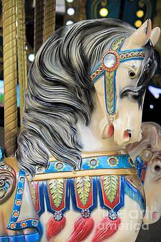 Carousel Horse 1 by Teresa Thomas