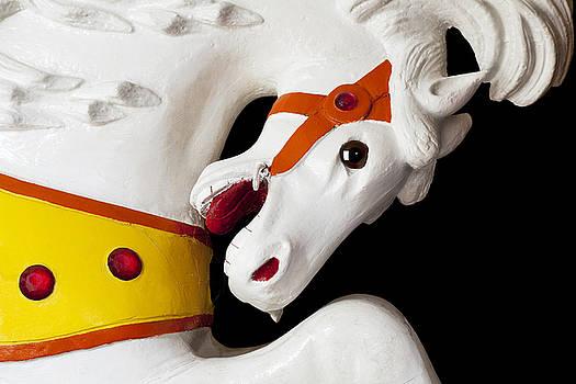 Kelley King - Carousel Horse 2