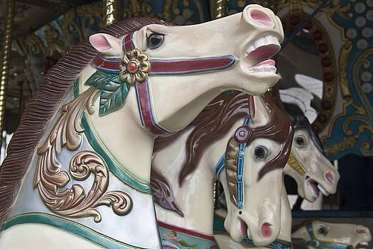 Donna Walsh - Carousel Horse