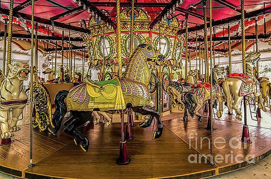 Carousel - Nola- Lafreniere Park by Kathleen K Parker