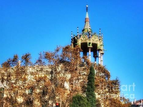 Carousel of Barcelona by Hilary England