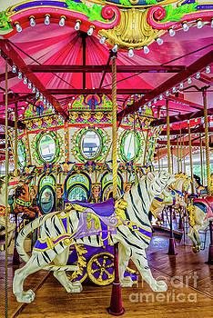 Carousel Tiger - Nola - Lafreniere by Kathleen K Parker