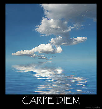 Carpe Diem by Jerry McElroy