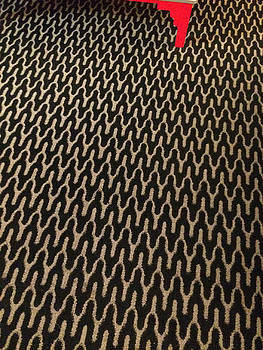 Carpet and Leg by Max Requenes