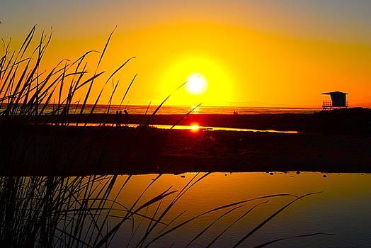 Carpinteria State Beach by Bransen Devey