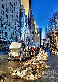 Carriage Ride by Debbi Granruth