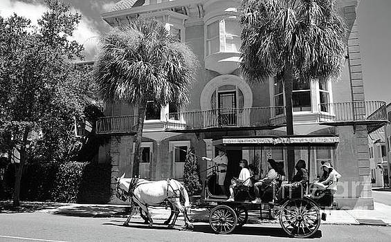 Paulette Thomas - Carriage Ride in Charleston