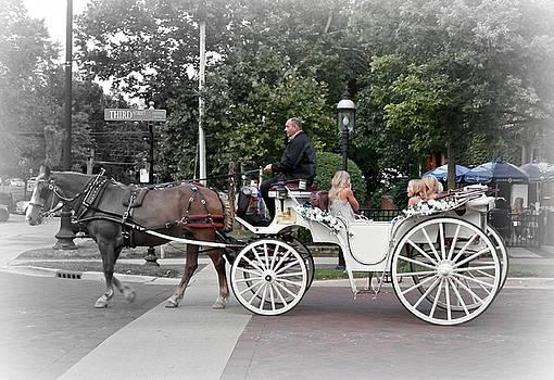 Carriage Ride Into Yesteryear by Deborah Kunesh