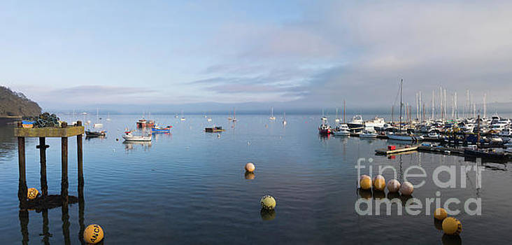 Carrick Roads Cornwall by Terri Waters