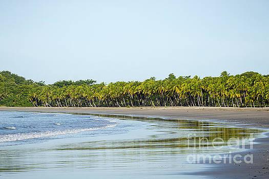 Oscar Gutierrez - Carrillo Beach