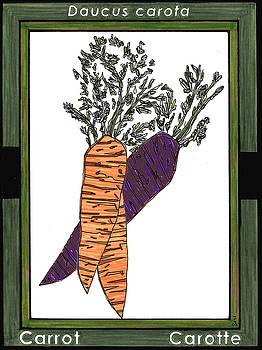 Carrot Carotte by Baya Clare