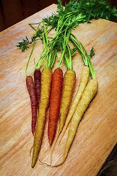 Mike Penney - Carrots Multicolored