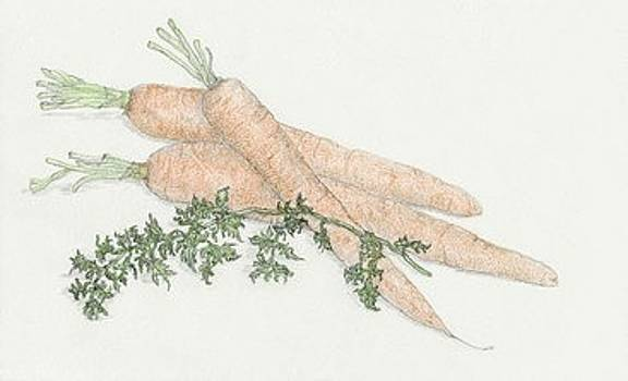 Carrots by Tara Poole