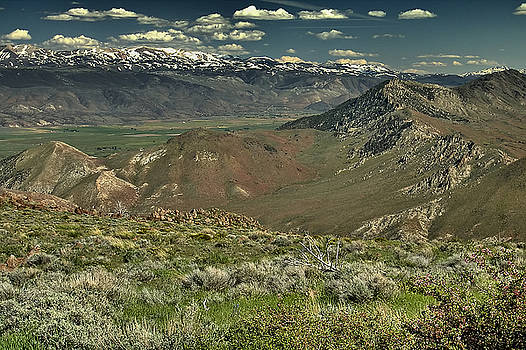 Carson Valley 1 by Michael Gordon
