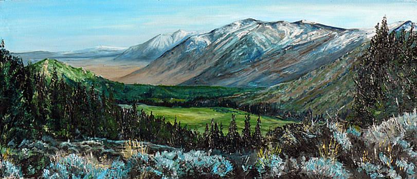 Carson valley landscape by Seth Johnson