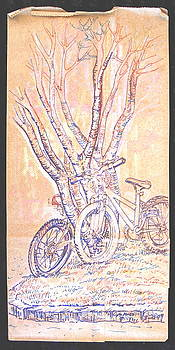 Cart Herder Bikes by Radical Reconstruction Fine Art Featuring Nancy Wood