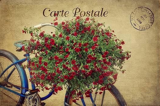 Carte Postale  by Stephanie Calhoun