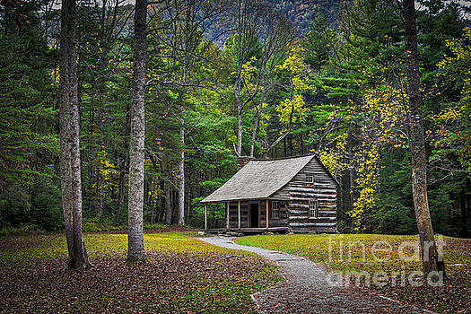 Carter Shields Cabin in Cades Cove TN Great Smoky Mountains Landscape by T Lowry Wilson