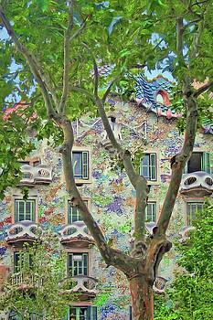 Nikolyn McDonald - Casa Batllo - Plane Tree - Barcelona
