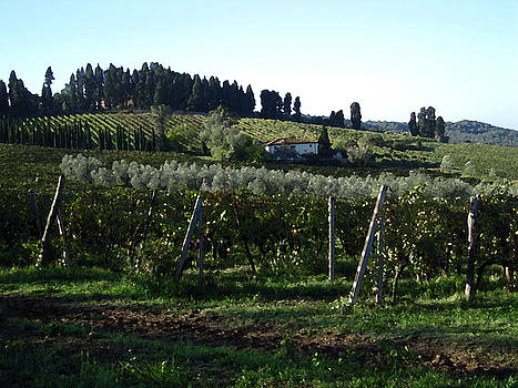 Casa Bella Tuscany by Paul Barlo