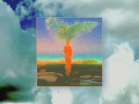 CasaPaz Dawn in Sky by Jack Eadon