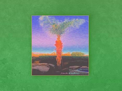 CasaPaz Dawn by Jack Eadon