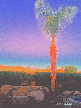 CasaPaz  Palm at Dawn by Jack Eadon