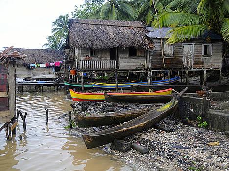 Rosa Diaz - Casas and Canoes