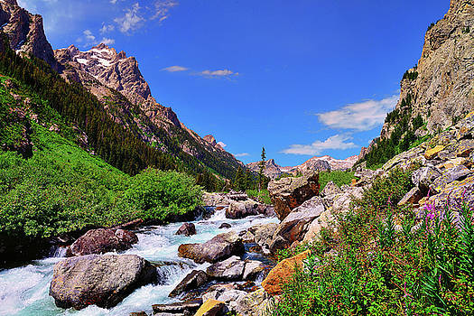 Cascade Canyon by Greg Norrell