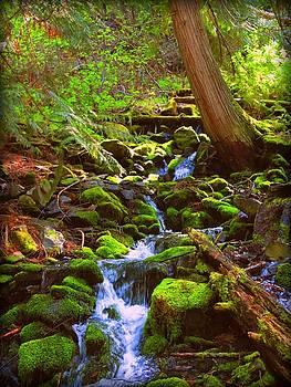 Leah Grunzke - Cascade Creek
