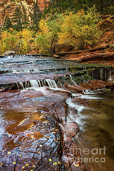 Jamie Pham - Cascade Falls in Zion
