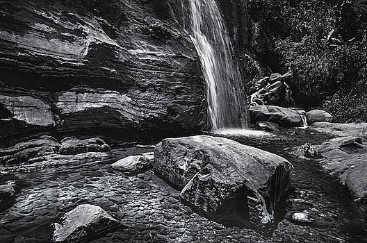 Jenny Rainbow - Cascade of Bambarella Saree Ella. Monochrome